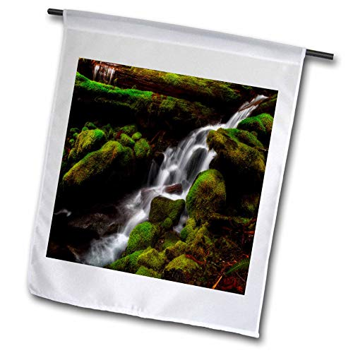 (3dRose Mike Swindle Photography - Landscapes - Creek Flowing Down Over Moss Covered Rocks - 12 x 18 inch Garden Flag (fl_307822_1))