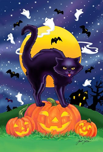 Toland Home Garden Black Cat 12.5 x 18 Inch Decorative Halloween Kitty Pumpkin Garden Flag -