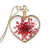 Women Dry Flower Heart Glass Wishing Bottle Pendant Review and Comparison