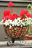 Toland Home Garden Ladybugs 14-Inch 2-Gallon Decorative Insulated Cauldron Art Planter Basket for Decks, Driveways, Patios, Tabletops, and Walkways 272046