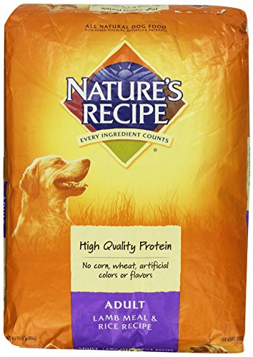 Natures Recipe Dry Dog Food for Adult Dog Lamb and Rice Meal 15 Pound Bag