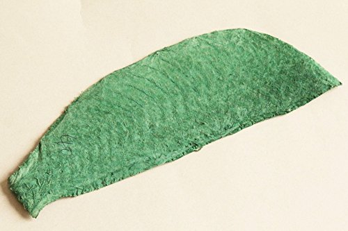 Tilapia Fish Skin Hide Leather Craft Supply various colors (Lime)
