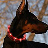 Led Dog Collar USB Rechargeable Glowing Pet Safety Collars Water Resistant Light up Improved Dog Visibility & Safety Adjustable Flashing Collar for Dogs 6 Stylish Colors by Bseen (Red)