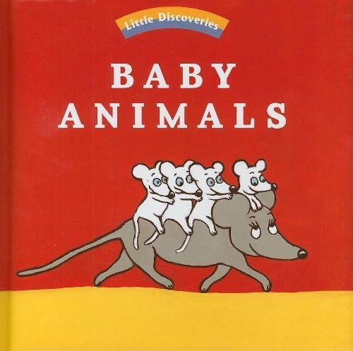 Download Baby Animals (Little Discoveries) ebook