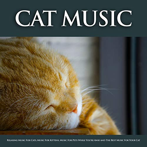 Cat Music: Relaxing Music For Cats, Music For Kittens, Music For Pets While You're Away and The Best Music For Your Cat (Best Music For Cats)