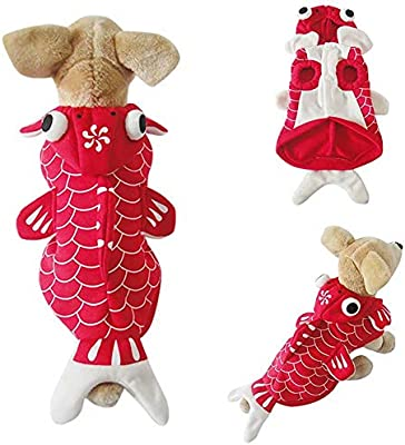 qiaoniuniu - Disfraz de pez Dorado para Perro, para Invierno ...