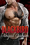 Free eBook - Blackbird