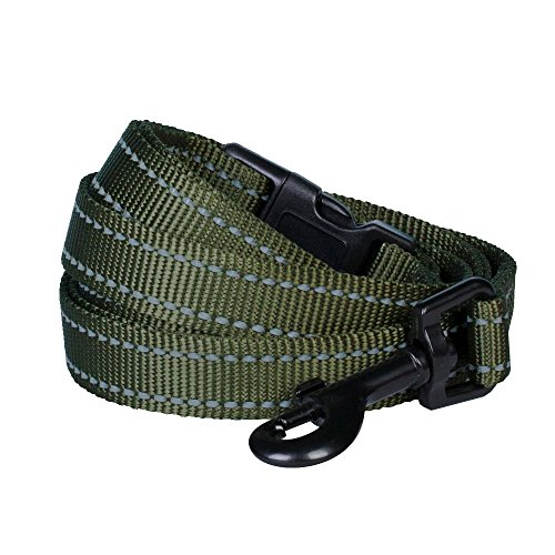 """Blueberry Pet Leashes for Dog 3/8"""" by 6-Feet Long Durable Dog Leash in Olive Green, X-Small"""
