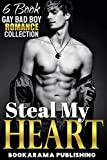 Steal My Heart: Gay Bad Boy Romance Collection