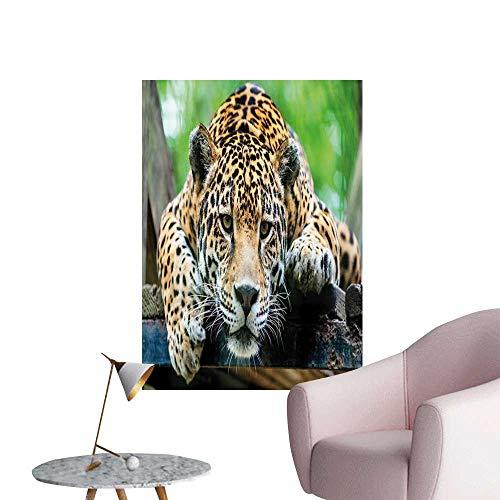 (Jungle Wall Stickers South American Jaguar Wild Animal Carnivore Endangered Feline Safari Image Office Fashion Orange Black Green W8 x H10)