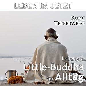 Leben im Jetzt: Leben als Little-Buddha im Alltag Hörbuch