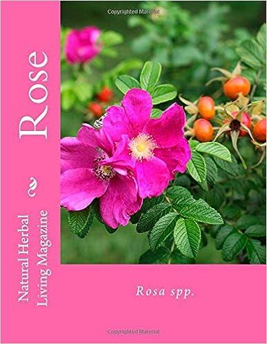 Rose - Rosa spp.: Rosa spp.