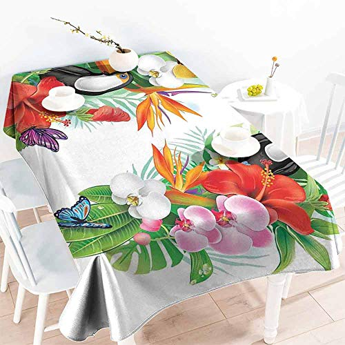 HCCJLCKS Easy Care Tablecloth Tropical Animals Native Australian Animals with Koala Reptiles and Kangaroo Nature Life Concept Excellent Durability W52 xL72 Multi