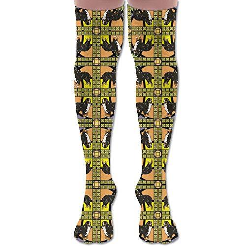 HFJDLSK Knee Long Socks Tube Thigh-High Sock Stockings - Bernese Mountain Dog Frame Fabric Giftwrap (1837) Print for Girls & Womens