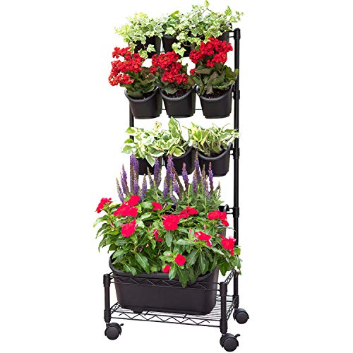 (Watex Mobile Green Wall (Single Frame, Black))