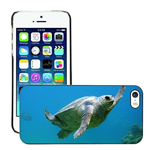 Stampato Modelli Hard plastica Custodie indietro Case Cover pelle protettiva Per // M00421711 Natation Sous l'eau Tortue // Apple iPhone 5 5S 5G