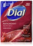 power berries dial - Dial Bar Soap Antioxidant Power Berries 4 Ounce 8 Bars