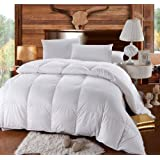 Royal Hotel Collection 300 Thread Count Queen Size Hungarian Down Alternative Comforter 100% Cotton 300 TC - 750FP - 70Oz - Solid White