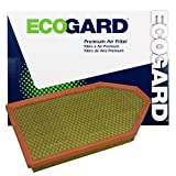 ECOGARD XA6167 Air Filter
