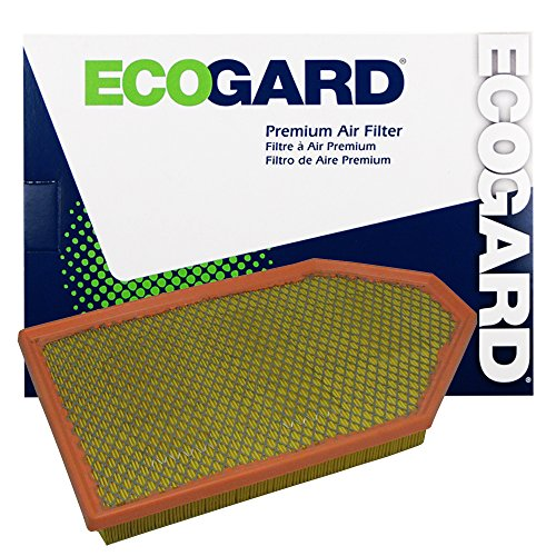 ECOGARD XA6167 Premium Engine Air Filter Fits Dodge Charger / Chrysler 300 / Dodge Challenger (Chrysler Engine)