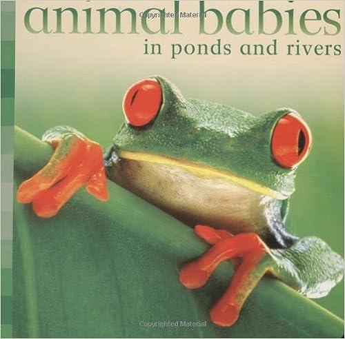 Kostenloses pdf es Bücher herunterladen Animal Babies in Ponds and Rivers auf Deutsch PDF CHM