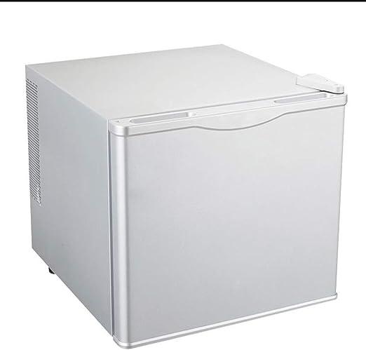 GL- Refrigerador portátil de 17 litros y 220 litros de Mini ...