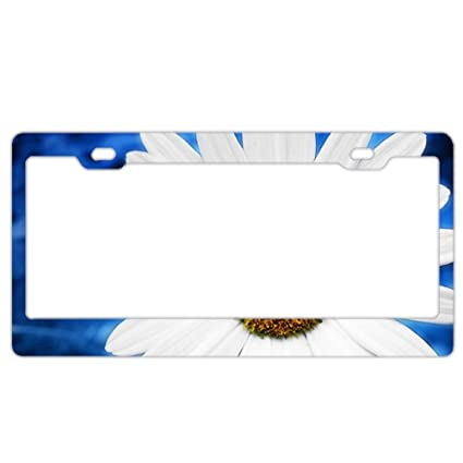 Amazon.com: Personalized Custom Made Blue Daisy Metal License Plate ...