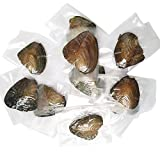 HENGSHENG 100 PCS Akoya Pearl Oyster with 7-8mm Pearls Inside (bcpo002-100) (3 Color Random)