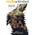 COLATERAL (Willers Family Livro 2)