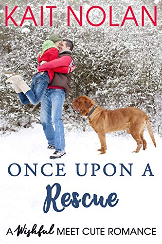 Once Upon A Rescue: A Wishful Meet Cute Romance