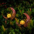 YUNLIGHTS 2pack Solar Garden Lights Outdoor, Moon Crackle Glass Globe Solar Stake Light, IP64 Waterproof Solar Powered Garden Stake Lights for Garden Patio Backyard Pathway Decoration, Warm White
