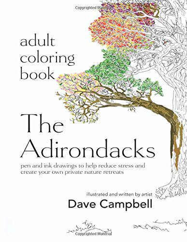 Download Adult Coloring Book: The Adirondacks PDF