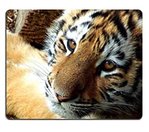 Baby Tiger cub wildcat wildlife animal Mouse Pads Customized Made to Order Support Ready 9 7/8 Inch (250mm) X 7 7/8 Inch (200mm) X 1/16 Inch (2mm) High Quality Eco Friendly Cloth with Neoprene Rubber Liil Mouse Pad Desktop Mousepad Laptop Mousepads Comfortable Computer Mouse Mat Cute Gaming Mouse pad