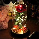 Liveup SPORTS Beauty and the Beast Red Rose Enchanted Red Silk Rose and LED Light with Fallen Petals in Glass Dome on a Wooden Base BEST Gift for Valentine's Day Wedding Anniversary Birthday