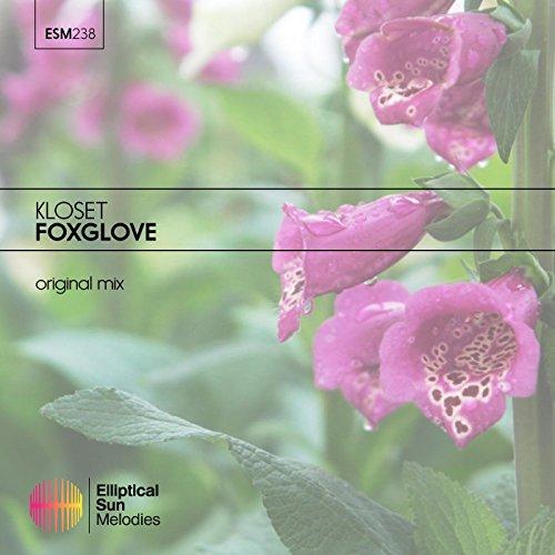 Foxglove (Original Mix)