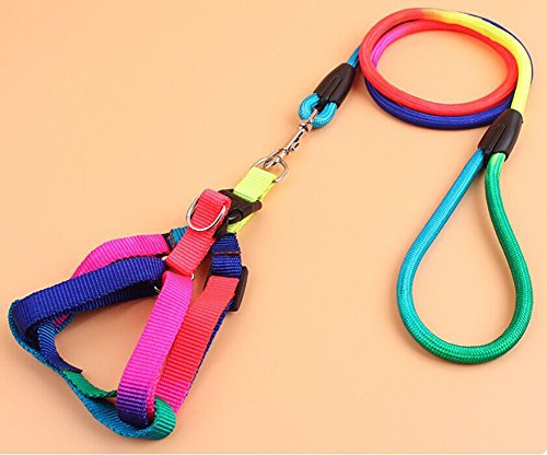 mk. park Pet Dog Rainbow Nylon Rope Training Leash Lead Strap Adjustable (M) - Ace Ventura Pet Detective Costume