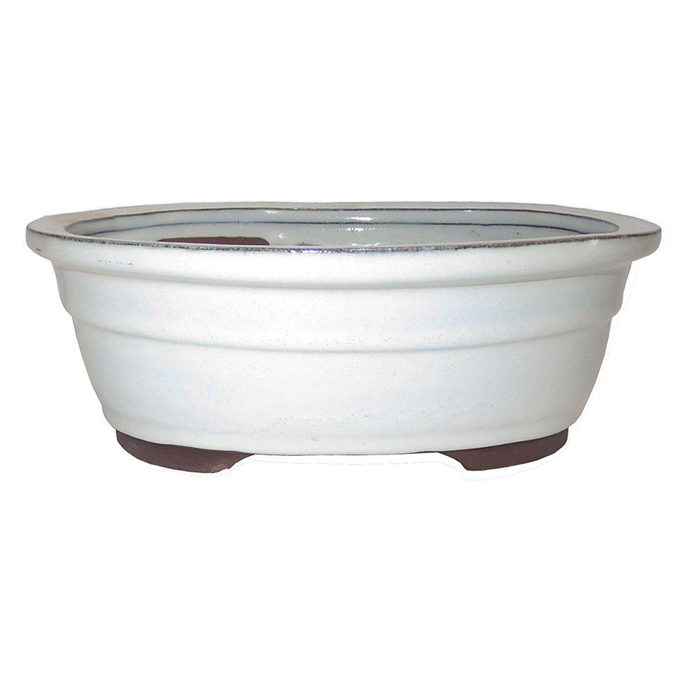 Brussel's Bonsai CGO38-10NCM Bonsai Glazed Ceramic Pot, 10'', New Cream