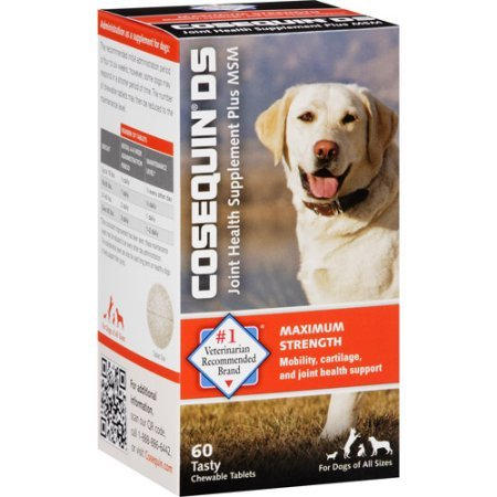 Cosequin DS Joint Health Supplement Plus MSM for Dogs Tablets, 60 count (Health Plus Tabs 60)