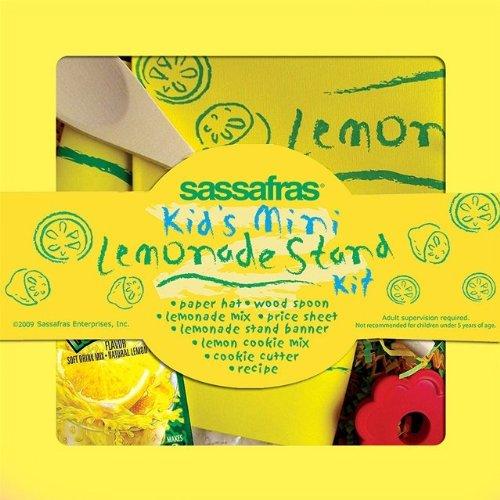 Kids Lemonade Stand - Mini Lemonade Stand Kit