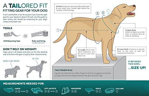 Pictures of Kurgo Loft Jacket Reversible Dog Coat Dog 01848 Coastal Blue/Orange 3