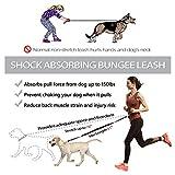 Hands Free Dog Leash for Running Walking Jogging