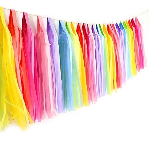 Rainbow Tissue Paper Tassels DIY Party Garland, 35 Tassels by Azude