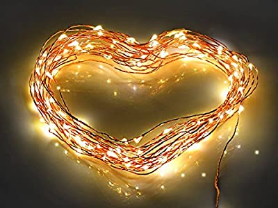 Beautiful Decorative White Starry LED String Lights with 100 Leds on Flexible Copper Wire By Seren for Christmas, Party, Holiday, Indoor and Outdoor Lights for Homes, with 5v Power Adapter (33 Ft)