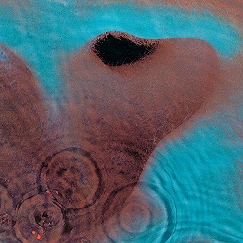 Meddle (Pink Floyd Album)