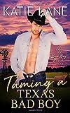 Taming a Texas Bad Boy (Bad Boy Ranch)