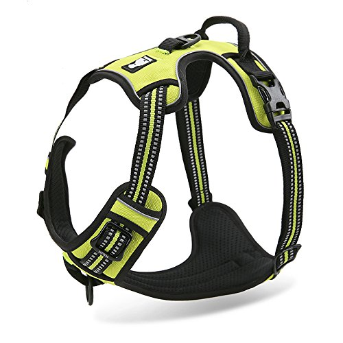 Pettom No-Pull Dog Harness Safe Control Reflective Outdoor Adventure Pet Vest Harness with Padded Handle (Green, Large)