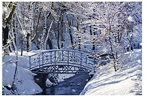 thaisan7, Winter Wonderland Backdrop Frozen Winterland Wall Mural Prop Large Nice New,9ft x 6ft -