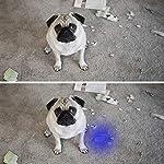 Black Light UV Flashlight UV Light,Vansky Blacklight 12 LED Urine Detector For Dog/Cat/Pet Urine & Dry Stains and Bed Bug On Carpets/Rugs/Floor,Matching with Pet Odor Eliminator 12