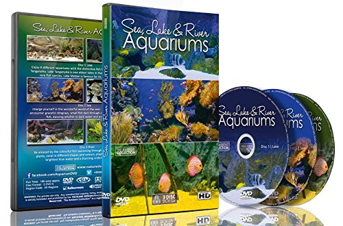 - Aquarium DVD - 3 DVD SET Sea, Lakes & River Aquariums - 3 DVD Set 18 Different Themed Aquarium