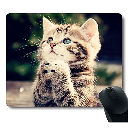 top 5 best mouse pad kitten,sale 2017,Top 5 Best mouse pad kitten for sale 2017,
